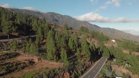 空中射击 驾车在山柏油路在日落 围拢由绿色杉木森林,低云,蓝色 影视素材
