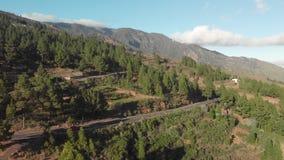空中射击 驾车在山柏油路在日落 簪子轮 围拢由绿色杉木森林,低 股票视频