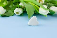 空白背景蓝色的花 与郁金香和石头花束的情人节背景以心脏或摘要的形式 免版税库存图片