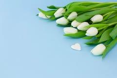 空白背景蓝色的花 与郁金香和石头花束的情人节背景以心脏,卡片的形式为 图库摄影