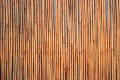 竹墙壁背景 免版税库存图片