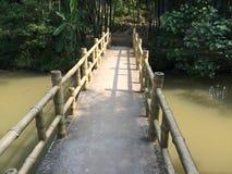 竹木桥 stock photo