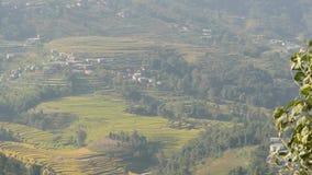米大阳台风景在乡下 米大阳台全景在喜马拉雅山山绿色农村土地  影视素材