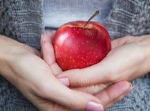 红色成熟水多的苹果在女性手上 免版税库存图片