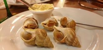 纤巧-蜗牛用在南特餐馆的蒜泥蛋黄酱调味汁 免版税库存图片