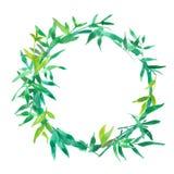 绿色竹叶子框架,自然花圈圈子框架,被隔绝的水彩例证 向量例证