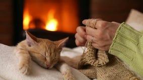 编织在壁炉,她的小猫的妇女手睡觉在她的膝部 股票视频
