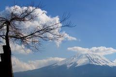 美丽山富士,天空蔚蓝和云彩的富士圣作为背景 免版税库存图片