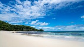 美丽的海滩 好的热带海滩看法与棕榈的 假日和假期概念 热带的海滩 图库摄影