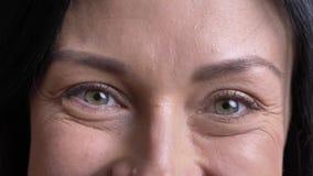 美丽的成人白种人女性面孔特写镜头画象与愉快地看直接照相机的国王灰色眼睛的 影视素材