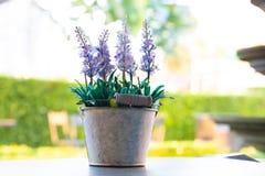 美好的春天开花在woodward木背景的铃兰和丁香花 库存图片
