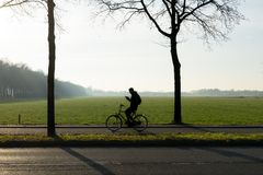 看在他的在早晨太阳的电话的骑自行车者的剪影与薄雾 免版税库存图片