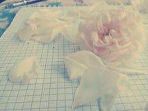 玫瑰在笔记本 桃红色口气 库存图片