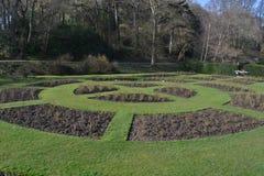 玫瑰园在春天的初期 库存图片