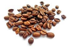 烤棕色被隔绝的咖啡豆和种子 免版税库存图片
