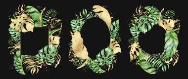 热带水彩在黑背景留下横幅 异乎寻常的花卉设计 象查找的画笔活性炭被画的现有量例证以图例解释者做柔和的淡色彩对传统 库存例证