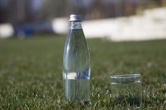 瓶和玻璃与淡水在草背景 免版税图库摄影