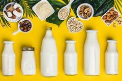 牛奶店自由牛奶替代品饮料和成份 库存图片