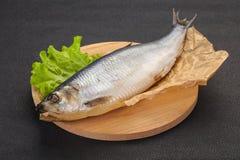 盐味的鲱鱼鱼 库存图片