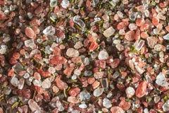 盐和香料在阳光下 免版税库存照片
