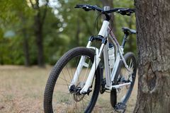 白色自行车身分在被放弃的公园 可爱的天、早期的秋天或者夏天,忧郁镇静心情,蓝色大气 早晨fitne 免版税库存照片