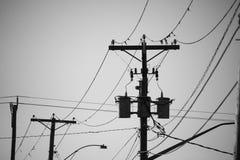 电源杆和输电线在黑白 免版税库存照片