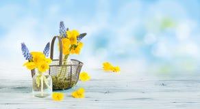 蝴蝶花和葡萄风信花在一个木基地当贺卡 免版税库存图片