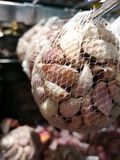 被剥皮的大蒜在一个滤网袋子包装了待售在超级市场 免版税库存照片