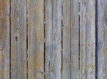 被风化的老灰色木篱芭纹理  免版税库存图片