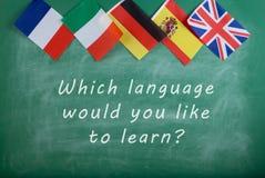 """西班牙的旗子、法国、英国、俄罗斯和意大利和黑板有文本的"""";哪种语言您要不要学会 免版税库存图片"""