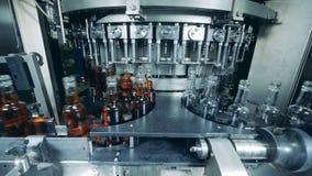 许多瓶用在植物机器的酒精填装了 威士忌酒,刻痕,波旁酒生产 股票录像