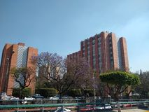 设置居住单位在墨西哥城 免版税图库摄影