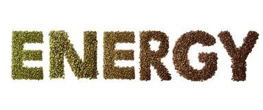 词能量被隔绝的做了烤和绿色咖啡豆在白色背景 库存图片