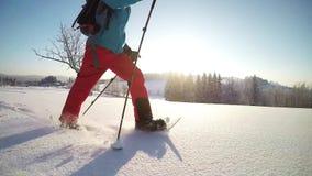 走在冬天山的雪靴的徒步旅行者 影视素材