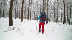 走在冬天山的雪靴的徒步旅行者 股票录像