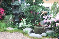 花展的经典日本庭院2019年 库存图片