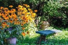 花园在房子的夏天 库存图片