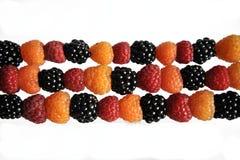 莓果莓黑,黄色和绿色在白色 免版税库存照片