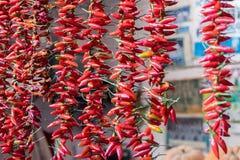 胡椒五颜六色的串待售在波尔图市场上(梅卡度做Bolhao 库存照片