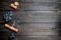 背景玻璃红葡萄酒 与拔塞螺旋和黄柏的葡萄 库存照片