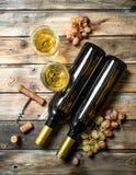 背景玻璃红葡萄酒 与新鲜的葡萄分支的白酒  库存照片