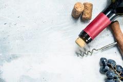 背景玻璃红葡萄酒 与的红酒葡萄和拔塞螺旋 免版税图库摄影