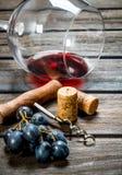 背景玻璃红葡萄酒 一杯与拔塞螺旋和藤的红酒 免版税库存照片