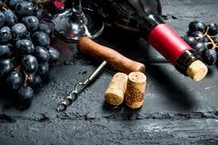 背景玻璃红葡萄酒 红酒用葡萄和拔塞螺旋 免版税图库摄影