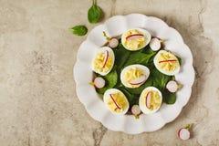 蘸芥末蛋作为开胃菜,顶视图 免版税库存照片