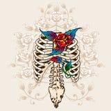 脊椎骨头和玫瑰 向量例证