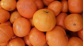 自然背景的新鲜的有机橙色果子 免版税库存图片