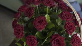 英国兰开斯特家族族徽花束vilentines的天,关闭,在花附近转动照相机 股票视频