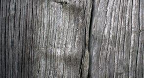 老橡木板特写镜头  免版税库存照片