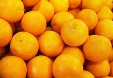 È arancio realmente fresco Fotografia Stock Libera da Diritti